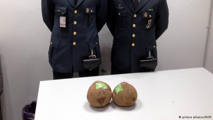 جاسازی ۳ کیلوگرم هروئین وسط دو نارگیل به مقصد ایتالیا این نارگیلها معمولی نیستند. داخل این دو نارگیل ۳ کیلوگرم هروئین جا سازی شده است. ماموران فرودگاه شهر میلان ایتالیا این نارگیلها را کشف و در این رابطه یک نفر را دستگیر کردهاند.
